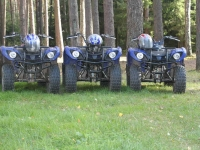 Квадроциклы Yamaha Grizzly