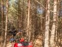 в лесных дебрях на квадроциклах